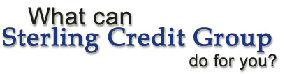 Commercial Credit Reports